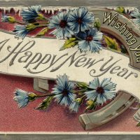 Happy new year: Wishing you a happy new year banner, over top of a horseshoe.